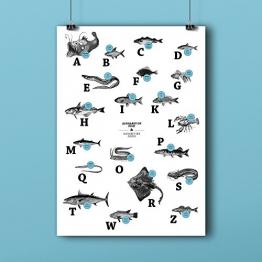 ABC der Fische / alphabet of fish in Deutsch/Englisch, DIN A1, Plakat, Poster - 1