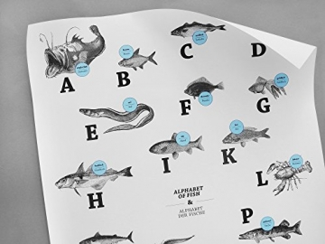 ABC der Fische / alphabet of fish in Deutsch/Englisch, DIN A1, Plakat, Poster - 2