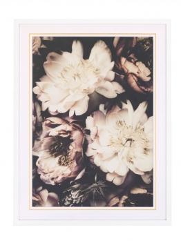 Bild, floral, MARAVILLA