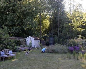 Bin im Garten: Ein Jahr wachsen und wachsen lassen - Mit vielen Fotos und Illustrationen - 5