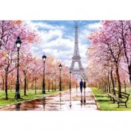 Castorland Romantic Walk in Paris 1000 Teile Puzzle Castorland-104369