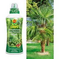 COMPO®  Palmendünger & Washingtonpalme