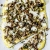 Deftig vegetarisch - schmoren, backen, braten, rösten, panieren, grillen - 7