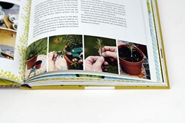Dein fantastischer Balkongarten: Ernten bis zum Abheben. Kräuter, Blumen, Pilze, knackiges Gemüse und wilde Nützlinge auf deinem Balkon. Alles zu ... sowie viele Gestaltungsideen und DIY Projekte - 9