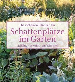 Die richtigen Pflanzen für Schattenplätze im Garten: vielfältig, bewährt, einfach schön - 1