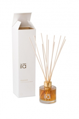 Essence of Joy Diffuser