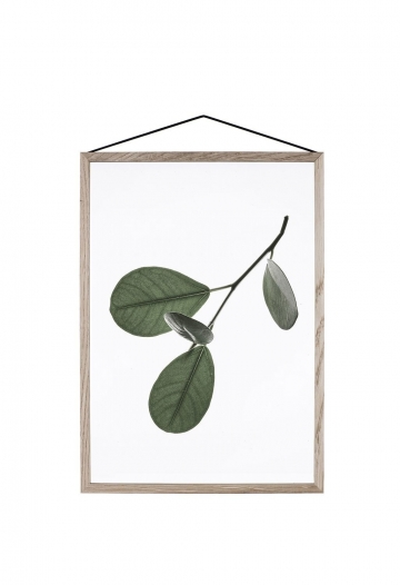 Floating Leaves A3 05 -
