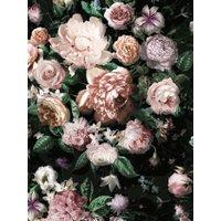 Fototapete, Blumen, Komar