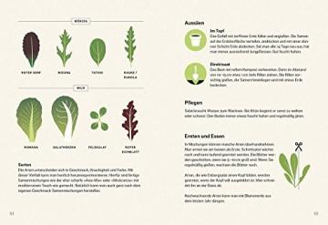 Gemüse-Know-how: Gebrauchsanweisung für Gartenneulinge - 4
