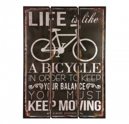 "Holzschild Albert Einstein ""Life is like a bicycle..."" Schild Nostalgie 70x50cm"