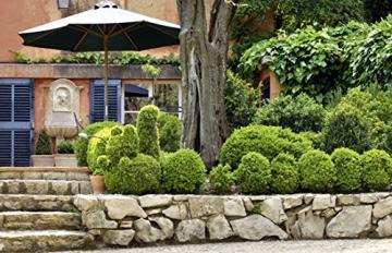 Mediterranes Gartendesign: Spektakuläre Privatgärten (Garten- und Ideenbücher BJVV) - 5