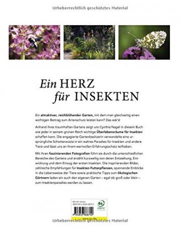 Mein summendes Paradies: So wird aus jedem Garten ein Oase für Bienen und Insekten (GU Garten Extra) - 2