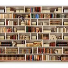 murando Fototapete Bibliothek 250x175 cm Vlies Tapeten Wandtapete XXL Moderne Wanddeko Design Wand Dekoration Wohnzimmer Schlafzimmer Büro Flur Buch Bücher 10110905-29 - 1