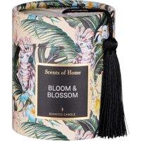 SCENTS OF HOME Duftkerze Bloom & Blossom H 8cm