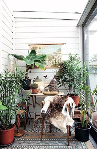 Grüner Wohnen. Einrichten + dekorieren mit Pflanzen - Shop Landhaus Look